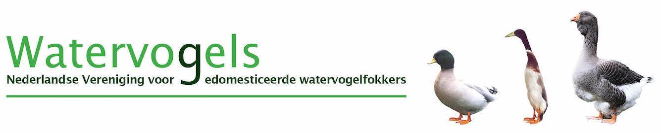 watervogels.com